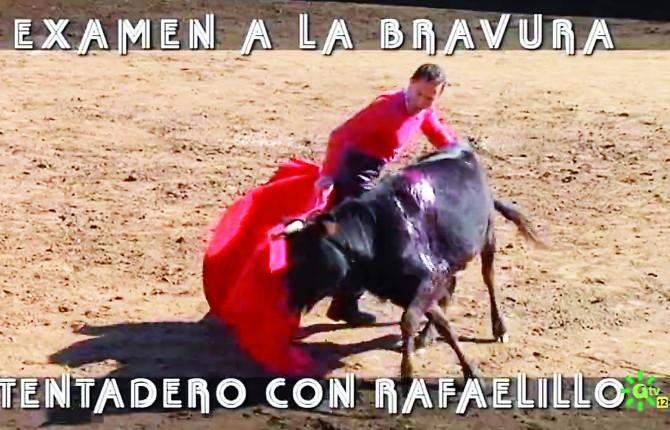 CON LA MULETA. El torero murciano-jiennense tantea con la franela al astado en la placita de El Añadío.